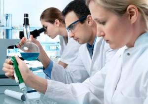 Подготовка к пластической операции осенью 2 1 300x211 - клиника VIdnova