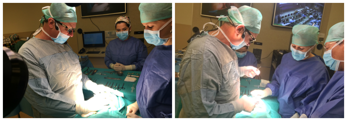 Мастер-класс «Open Rhinoplasty Live Surgery Course»: фото-отчет collage 1 - клиника VIdnova